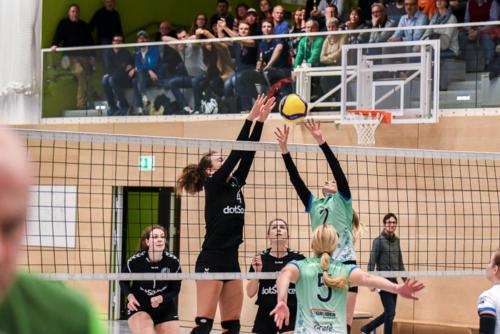 8. Heimspiel vs. VSV Jena
